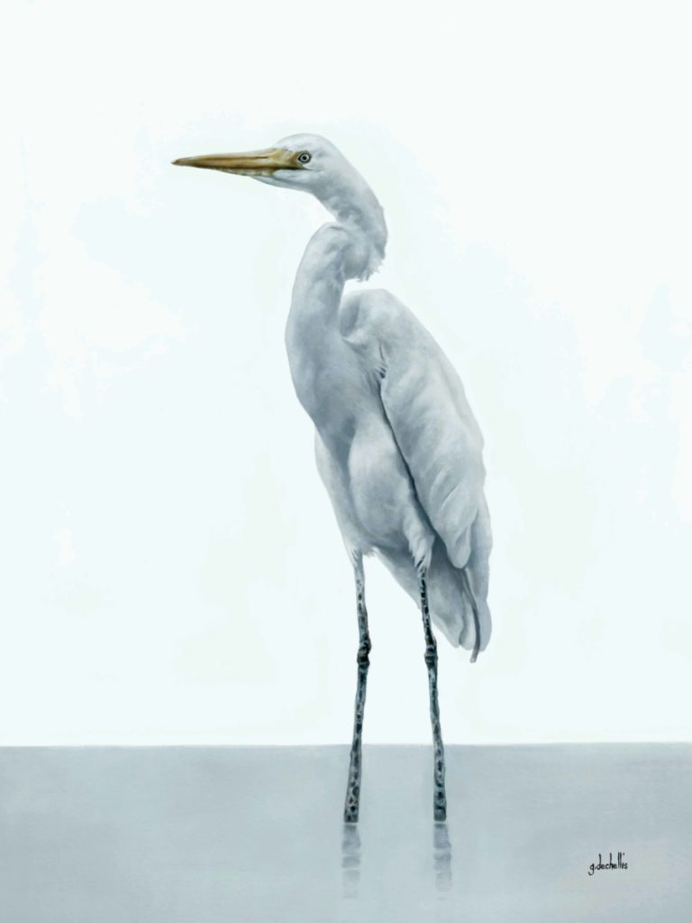 White Egret 1 - CoastLine Art